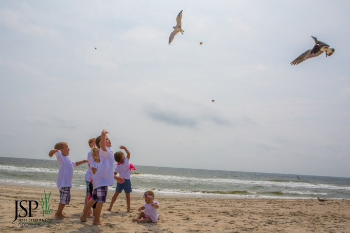 Carolina,Beach,family,portrait,Wilmington,seagulls